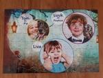 Prikkelstorm - puzzel Luuk, Tom en Liva