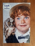 Prikkelstorm - puzzel Luuk en Poehoe de uil