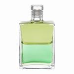 Equilibrium B053 Hilarion (lichtmeester)  50 ml
