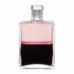 Equilibrium B110 Aartsengel Ambriel  50 ml